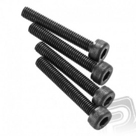 Allen screw with cylindrical head 3x20mm (4 pcs.)