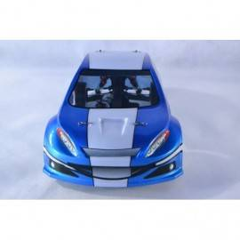 LC-Racing 1/14 RTR WRC - brushed