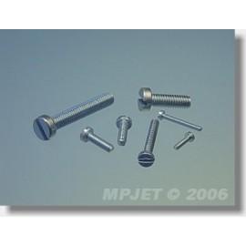0221 Śruba z łbem cylindrycznym M2,5x8 20 szt