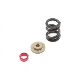 TLR Clutch Spring Kit HD: 22 All